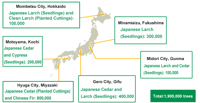 Cultivating Sumitomo Forestry Seedlings Throughout Japan