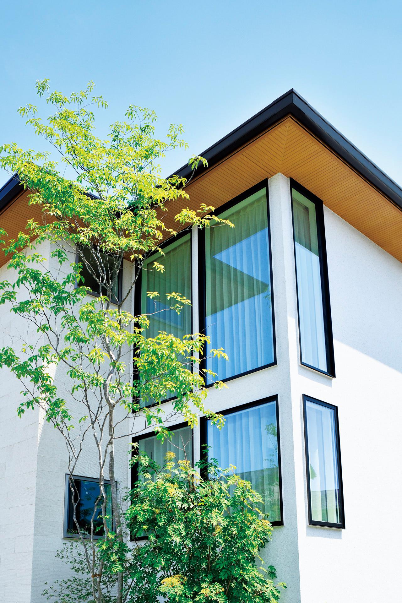 窓の工夫で手に入れた 明るい光と心地よい風 実例紹介 木造